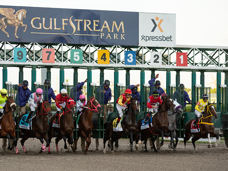 Huge Racing Weekend – Summit of Speed, Queen's Plate & More | Xpressbet