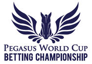 Pegasus World Cup Betting Challenge
